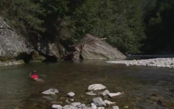 Wasserglück, Aqua Viva, Fische, Kurzfilm, Auenpark Aargau