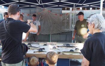 Tag der Fischerei 2019, AFV